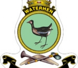 crest_waterhen
